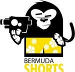 OK-LU Website bermudashorts_camneu